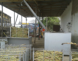 sugarcane hot water treatment rsd